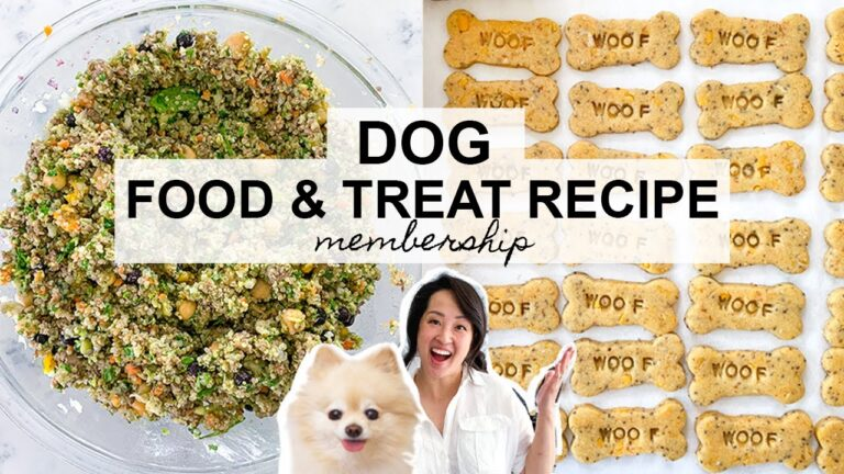3 Homemade Dog Treat Recipes That Vets Approved